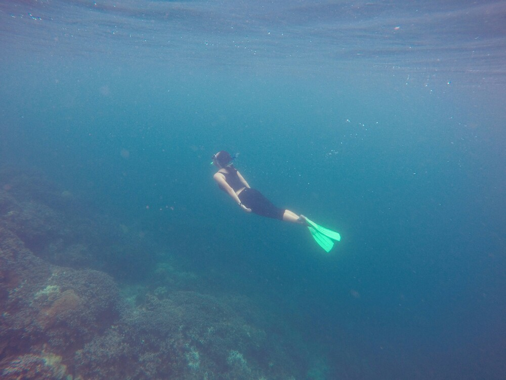 free-dive.jpg.jpeg